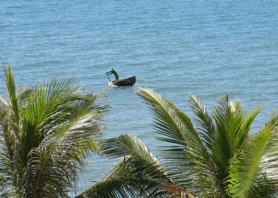 View---Coracle-above-the-coconut-trees
